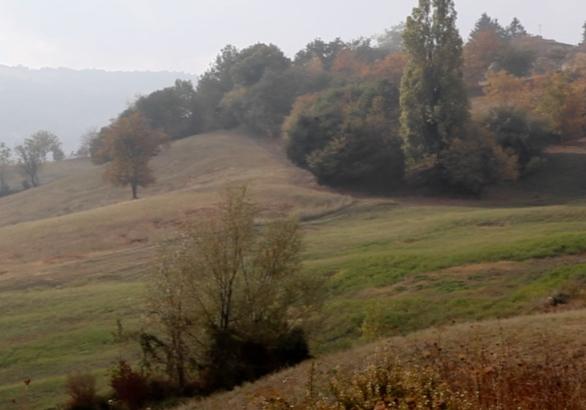 Caseificio di Parmigiano Reggiano di Bedonia (Parma) nell'Alta ValTaro